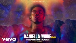 Patoranking ft. Elephant Man x Konshens - Daniella Whine (Official Remix Video)