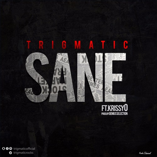 Trigmatic – Sane (feat. KrissyO)(Prod By Genius Selection)