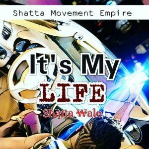 Shatta wale - Its My Life