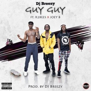 artwork cover DJ Breezy – Guy Guy (feat. Joey B & Mugeez )