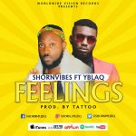 artwork for Shorn Vibes - Feelings (feat. Yblaq) (Prod. By Tattoo) , yellow background