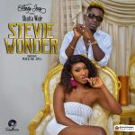Wendy Shay - Stevie Wonder (feat. Shatta Wale) (Prod. By M.O.G Beatz)
