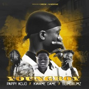 DredW - Young Boy (Feat Pappy Kojo, Kwame Dame & SlimDrumz)