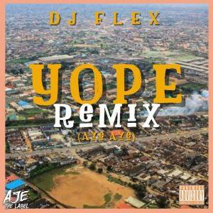 DJ Flex - Aye (YOPE Remix)