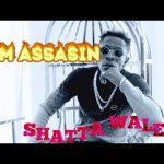 Shatta Wale - SM Assasin
