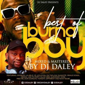 DJ Daley - Best Of Burna Boy Mix