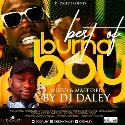 DJ Daley - Best Of Burna Boy Mix
