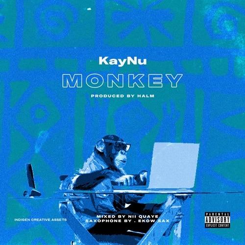 KayNu – MonKey (Prod. By HALM)