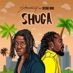 INSTRUMENTAL: Stonebwoy – Shuga (feat. Beenie Man) (Prod. By ON Dickson)