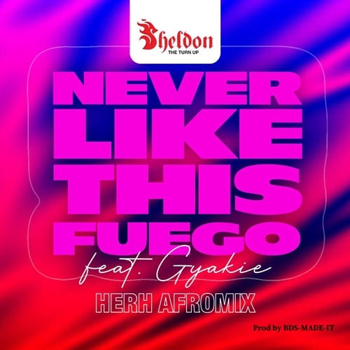 Sheldon The Turn Up – Never Like This Fuego HERH ARoMix