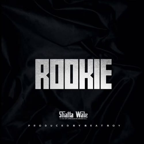 Shatta Wale – Rookie (Prod. By Beat Boy)