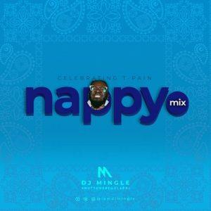DJ Mingle - Nappy Mix (T-Pain Mixtape 2020)