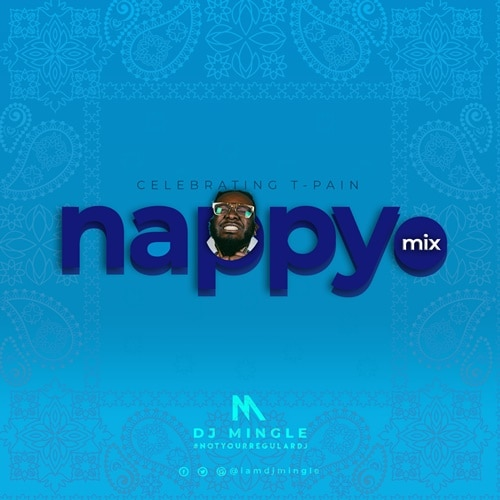 DJ Mingle - Nappy Mix (T-Pain Mixtape 2020)