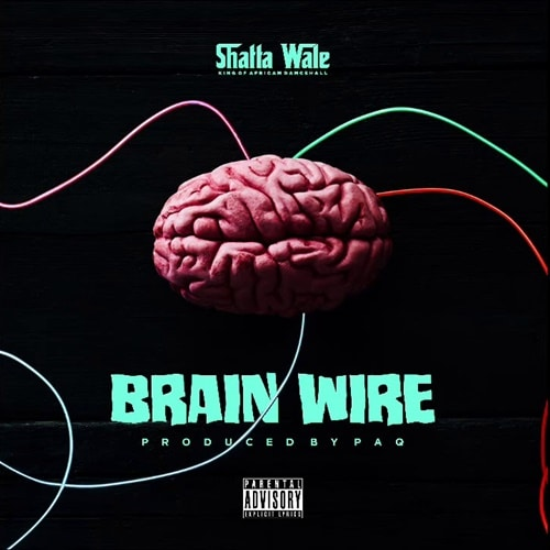 Shatta Wale – Brain Wire (Freestyle)