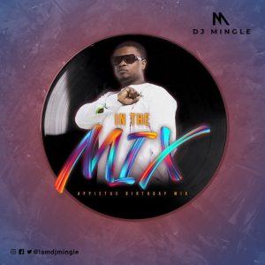 DJ Mingle - Appietus In The Mix