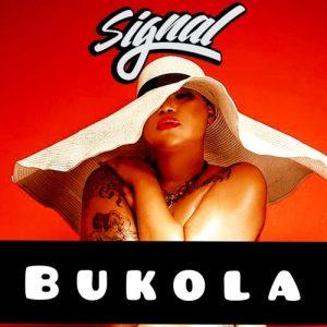 Signal - Bukola