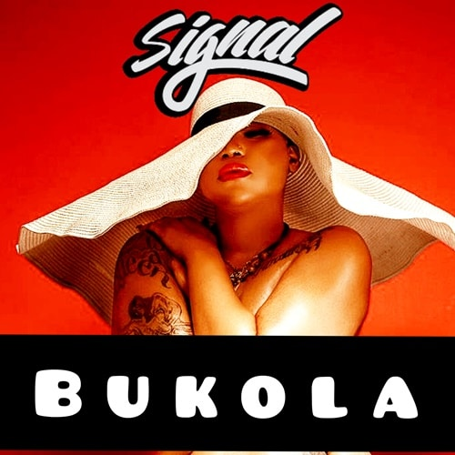 Signal – Bukola