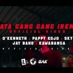 VIDEO: Reggie - Akata Gang Gang REMIX (feat. O'Kenneth, Pappy Kojo, Skyface SDW, Jay Bahd & Kawabanga)