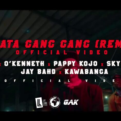 VIDEO: Reggie – Akata Gang Gang REMIX (feat. O'Kenneth, Pappy Kojo, Skyface SDW, Jay Bahd & Kawabanga)